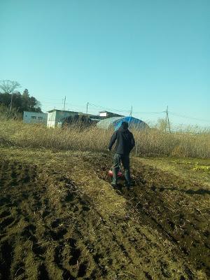 通信制高校サポート校、フリースクールのつくば高等学院で耕運機を使って畑を耕す作業の様子。